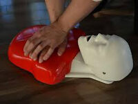 Heart and Stoke Certified CPR Certification for all levels!!