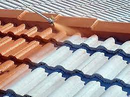 Re-pointing >Roof Painting>Roof Restoration | Re-bedding Endeavour Hills Casey Area Preview