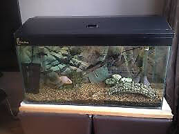 2 REPTILE/ RODENT TANKS/CAGE