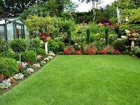 Garden force professional advice and services