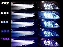 canbus xenon hid (brand new)