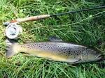 luxbow-Fliegenfischen