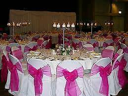 Wedding chair sashes ((hot pink))