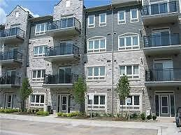 Beautiful and Spacious 2 Bedroom ,2 Washroom Townhouse for RENT