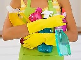 Reliable domestic housekeeper / cleaner / carer £10 per hour
