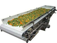 Conveyor for grains