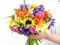 Wedding and Event Planner Best Prices in GTA