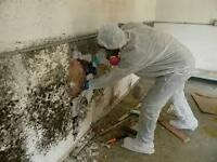 Call Now for a Hassle Free Service! Mold Removal Vancouver