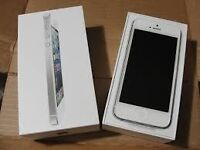 Apple iphone 5 , white and unlocked