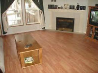 Carpet and Flooring Installations for A Low Price