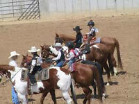 Fort MacLeod Midnight Riders 4H OPEN horse show