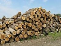 Hand cut logs