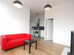 Stunning 2 double bedroom apartment warehouse conversion - Shoredicth/Short Let