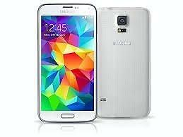 Samsung Galaxy S5 16GB White SM-G900W8 Unlocked Wind Warranty B54