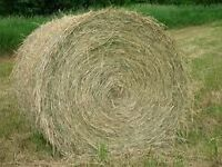 round bale bedding for cattle