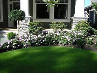 Do You Need a Yard Make-Over??? 250.893.3360