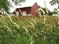 We're looking for a home in the country to start a hobby farm!