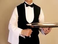Professional Waiter Seeks Part-Time.