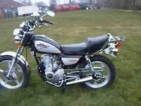 Huoniao hn 125 cruiser. V quick and reliable. Lovely condition. Fantastic runner. £595 bargain !!