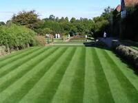 GRASS CUTTING AND GARDEN MAINTENANCE SERVICE[ EAST END AND GLASGOW NORTH]