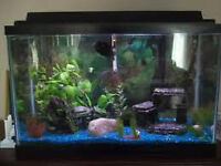 FAIRLY NEW 25 GALLON FISH TANK WITH ALL ACCESSORIES