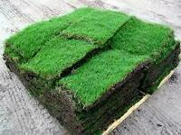 FALL SOD SPECIAL $1.00 SQ/FT WE DO INTERLOCK ALSO BOOK NOW!!!
