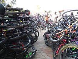 Adults bike wanted cheap or free