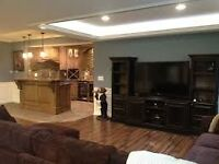 PROFESSIONAL FINISHING BASEMENT .. General Contractor