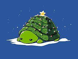 The Last Turtle Emporium