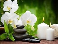 Relaxing Therapeutic Professional Massage for Ladies