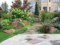 LANDSCAPING, yard cleanup, tree removal Cobourg
