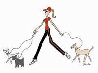 NEED A DOG WALKER