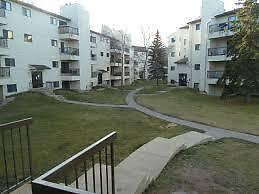 1 bd. Apt./Condo  in Millwoods 1st Month Free- Rent @ $795!!