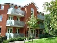 2 Bed Executive Flat - Central Exeter - with double parking
