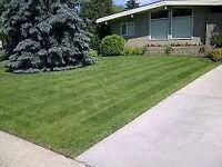 Lawn Care - Cheapest Rates - BRP Property Maintenance