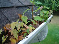 eaves/gutter cleaning