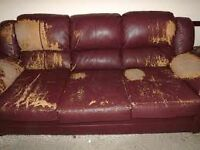 Free couch or help me bring to dump