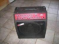 Leem pro-multiple amp