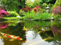 We like buy pond liner,plastic preformed pond & pond accessories