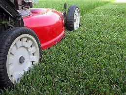 Property Plus Lawn & Garden Care Caloundra Caloundra Area Preview