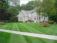 Spring Cleanup, Lawn Cutting and Garden Maintenance