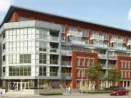 Furnished Bachelor Suite for Rent at The Red Condo (Waterloo)