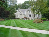 Lawn Cutting Garden Maintenance and more. Newmarket and Georgina