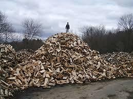 FIREWOOD /275$ / Hardwood / Delivery Incl.