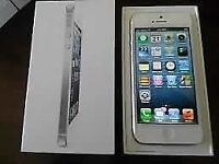 64 Gig White Rogers IPhone 5 with box