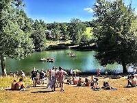 Wilderness festival Ticket, Cornbury Park Oxford 2nd - 3rd August