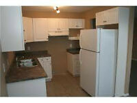NEWLY RENO 2 bedroom Suite May 1st