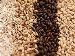 Brewing grain and supplies