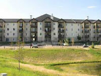 Warm and Cozy 2 Bedroom Apartment in Airdrie