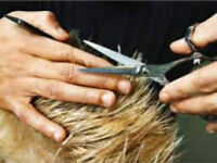 Advance Hair Cutting Training Classes, One on One, private class